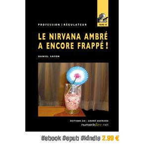 Profession : régulateur, tome 4 – Le Nirvana Ambré a encore frappé ! par DanielSafon