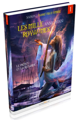 royaume3Dsimple